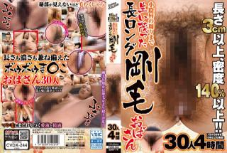 Center Village cvdx-244 CD2 Bushy Haired Ladies With A Forest Of Pussy Hairs 30 Ladies 4 Hours
